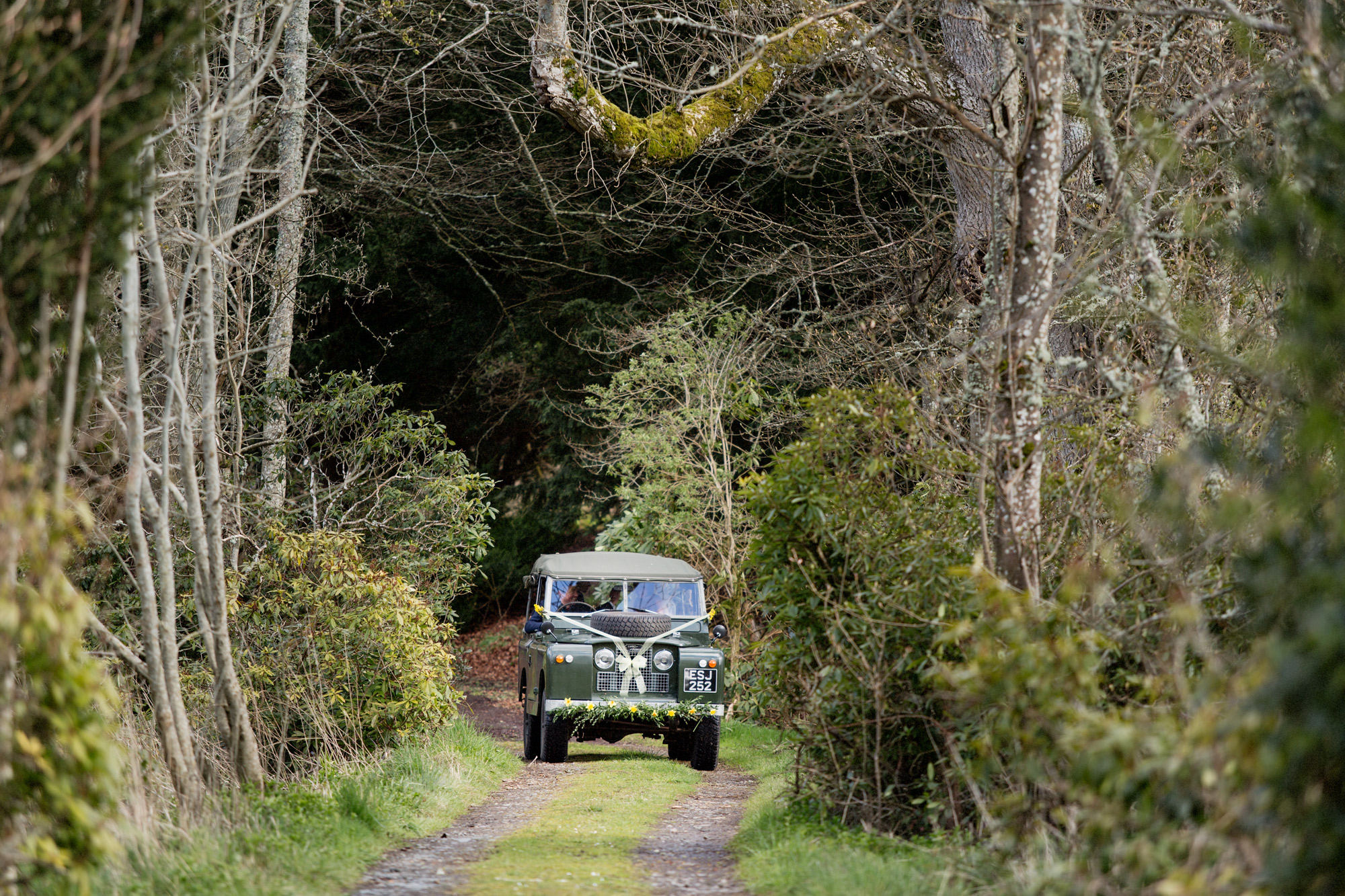 bridal car country style