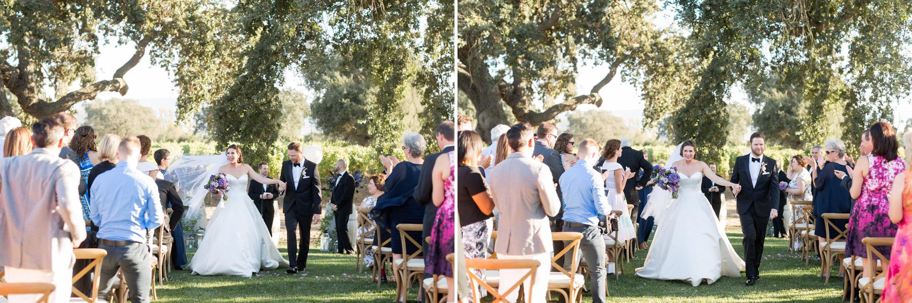 wedding at roblar winery los olivos