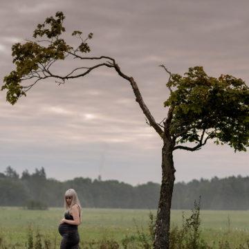 autumn pregnancy photography shoot