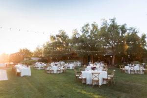 wedding breakfast roblar winery wedding