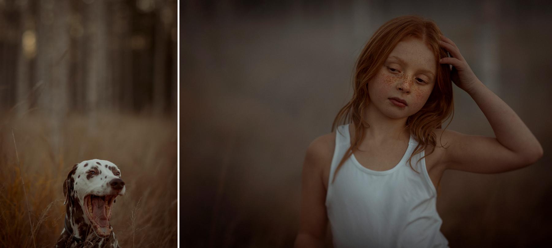 dalmatiner och fraknigt barn